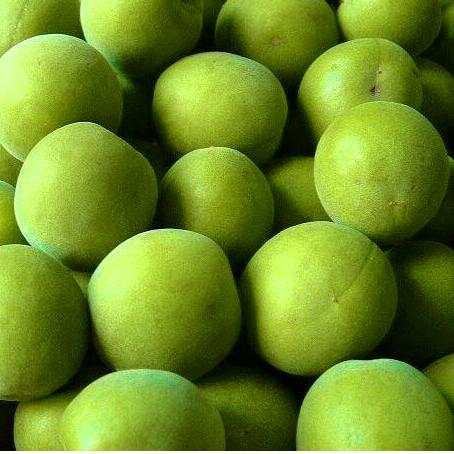 花蓮青梅煉製梅精